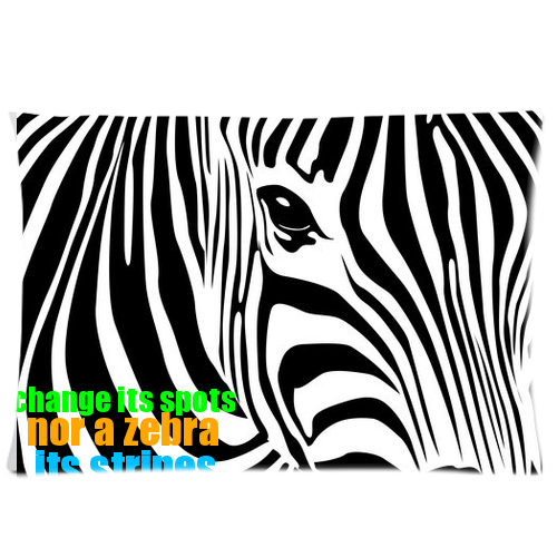 zebra pillow Custom Rectangle Pillow Cases 20x30 (one side)