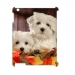 Case for iPad2 3G Wifi 3D