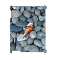 Case for iPad3 4G Wifi