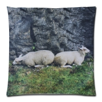 Custom Zippered Pillow Case 18x18 (one side)