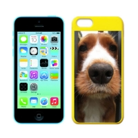 Custom Colorful Cases for iPhone 5C