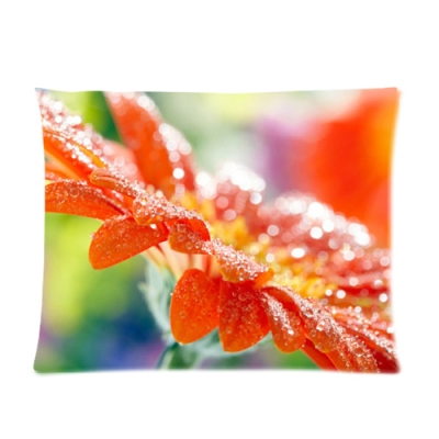 Custom Picture Pillow Cases 20x26 (one side)